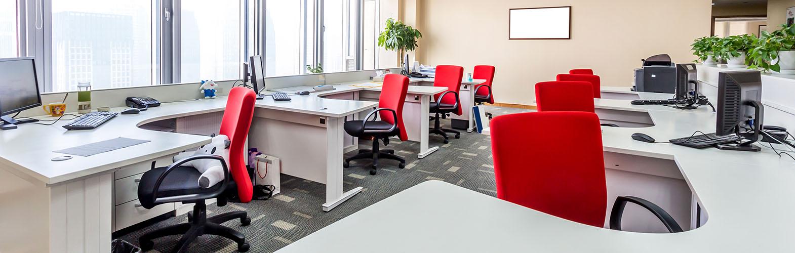 Ergonomic Office Design Consultation